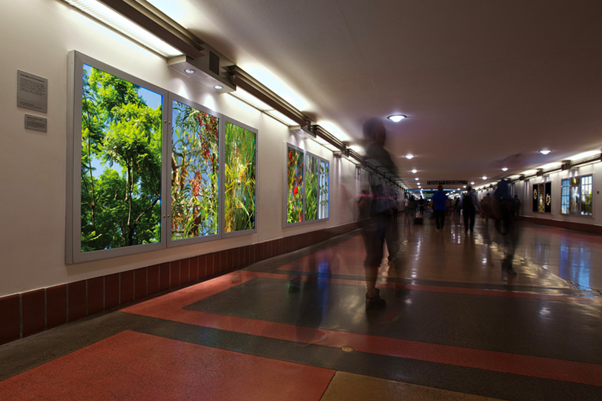 The Heart of Los Angeles on display in Union Station Passageway April 2014-June 2015.